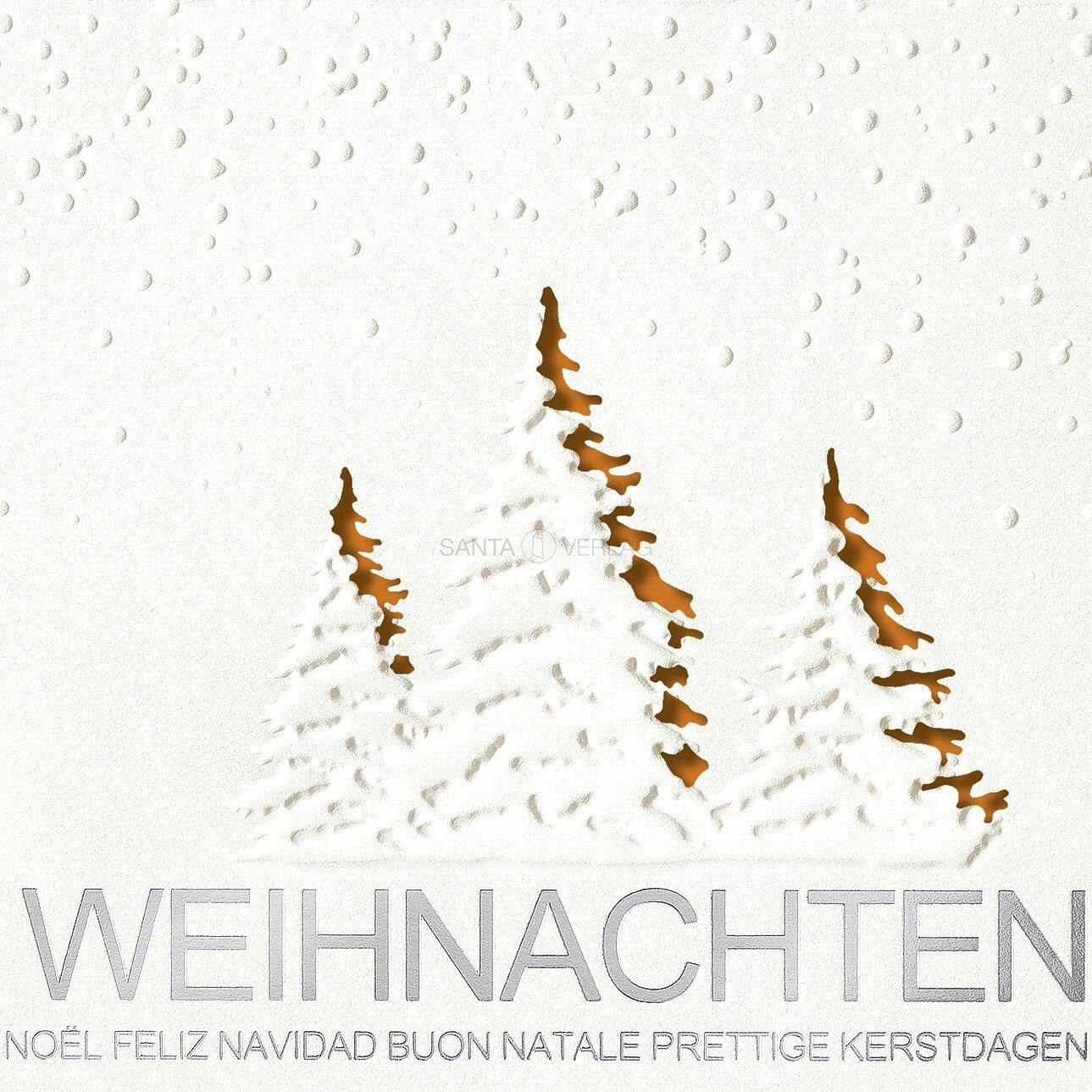 Bilder Weihnachtskarten.Weihnachtskarten Inkl Kuvert